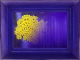 Chiara Denys, Poisoned Flowers - plexiglass cast and lenticular printing 3d