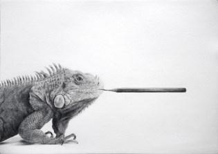 Massimiliano Galliani, Iguana, Creazione, Musei Civivi di Reggio Emilia, 2017