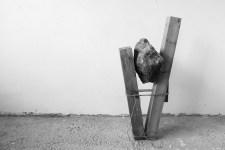 TIZIANO BELLOMI - Holding gravity