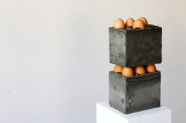 TIZIANO BELLOMI - packaging for eggs