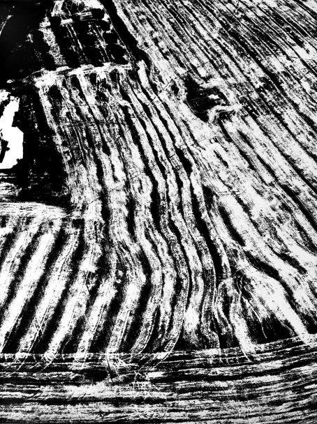 Mario Giacomelli, Presa di coscienza sulla natura, 1976-80, gelatin silver print, 40,4x30,5, Courtesy Archivio Mario Giacomelli - Rita Giacomelli