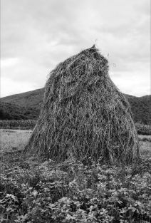 Lala Meredith-Vula,Haystacks (1989-ongoing), Galleria Alberto Peola 2018/2019