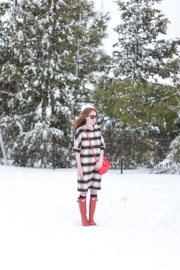 Winter wunderland_00002
