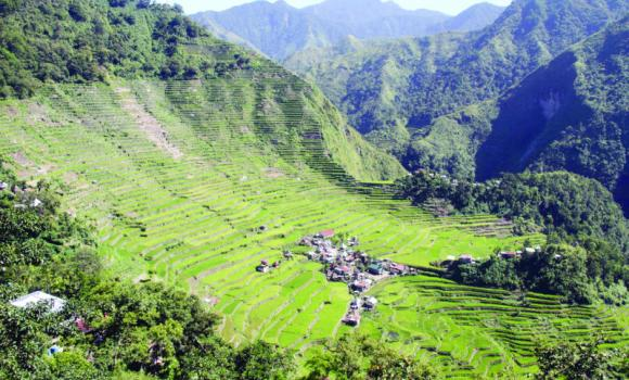 The 2,000-year-old Banaue Rice Terraces were carved into the mountains of Ifugao by the ancestors of the indigenous people.