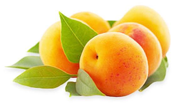 apricot-02