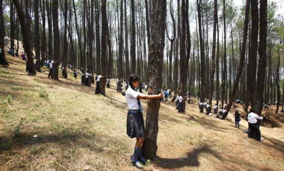 Nepalese students hug trees during a mass tree hugging on the World Environment Day on the outskirts of Katmandu, Nepal, on Thursday. More than 2,000 people gathered in Nepal's capital on Thursday in a bid to set a world record for the largest tree hug. (AP Photo/Niranjan Shrestha)