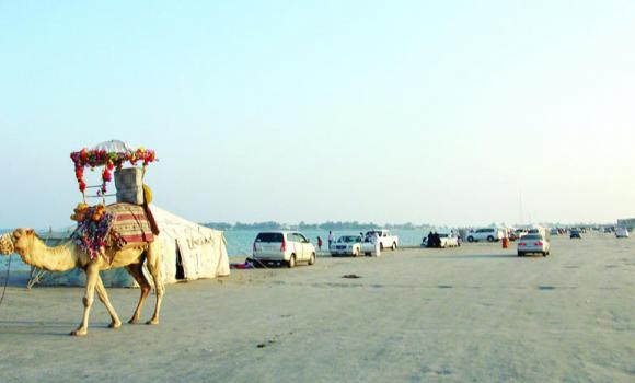 The Al-Aziziyah beach in the Eastern Province is among several on the Gulf coast that may vanish in a few years.