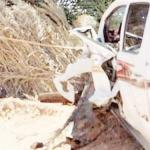 1 dead, 2 injured in Al-Jouf collision