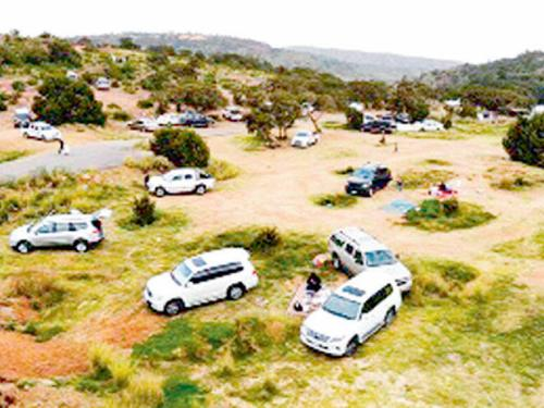 Record numbers of visitors headed to the mountains of Asir following the recent rain.