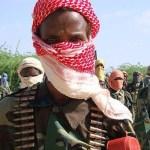 Al-Shabaab pledge allegiance to new leader