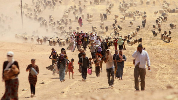 Thousands of Yazidis were forced to flee violence by ISIS fighters in the Sinjar region in Iraq.