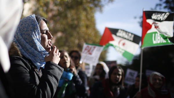 Protesters take part in a demonstration in support of Western Sahara's independence, in Madrid November 16, 2014.