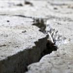 Magnitude 7.9 earthquake hits Nepal