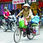 Vietnam economy grows at highest rate in five years