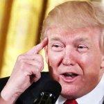 US envoy: Trump believes Mideast peace possible