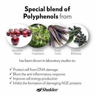 polifenol di dalam Vivix meningkatkan keberkesanan resveratrol