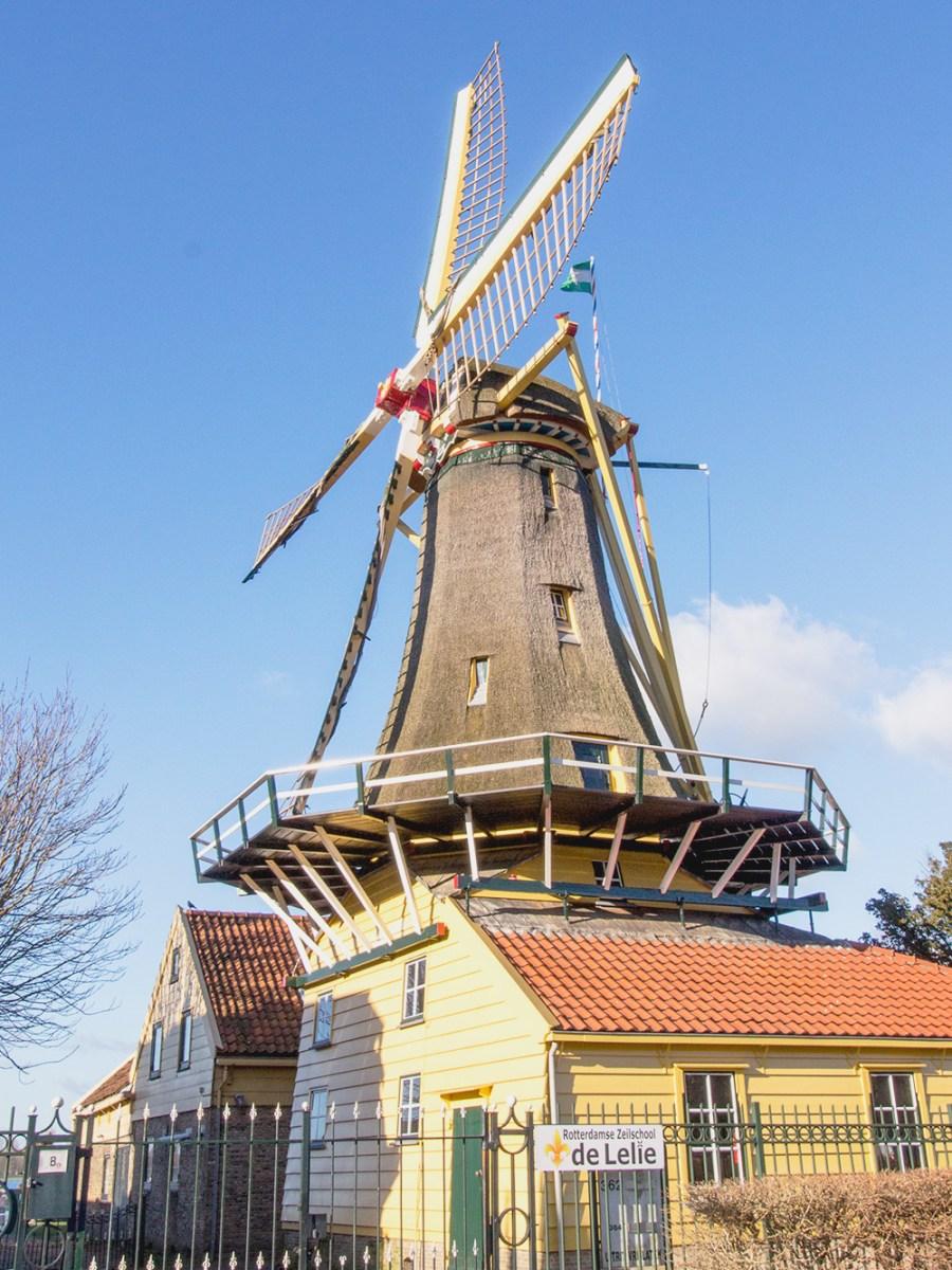 Kenapa Saya Memilih Kuliah S2 di Belanda