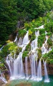 Brijuni, Croatia