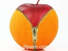 orange-zip-preview-7715636