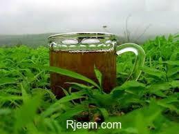 Photo of شراب يذيب الدهون في البطن و الارداف
