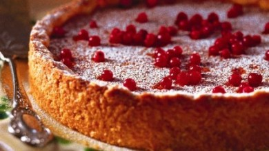 Photo of كعكة الشوكولا بالتوت البري