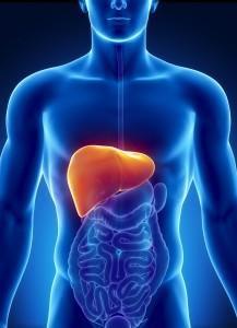 5  طرق طبيعية لمعالجة  الكبد