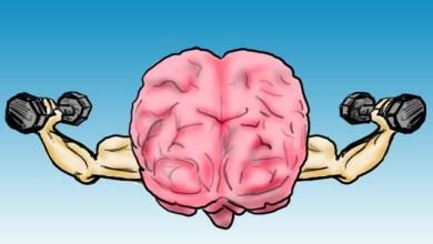 Photo of كيف تحسن اداء الدماغ