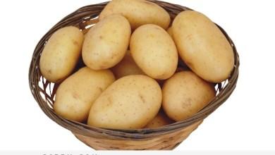 Photo of فوائد البطاطا