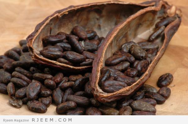 الكاكاو - فوائد واضرار الكاكاو