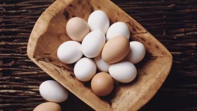 Photo of البيض – فوائد البيض الصحية والعلاجية