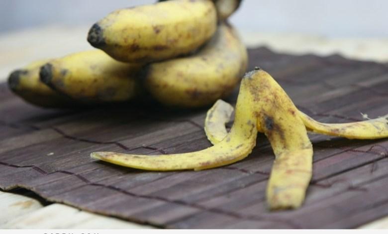Photo of فائدة تناول الموز يومياً على الريق