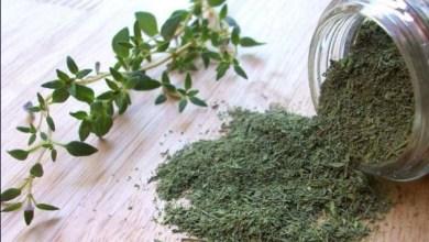 Photo of أعشاب طبيعية تساعد في تنحيف الكرش