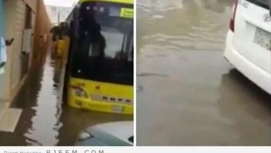 Photo of بعد الأمطار الغزيرة.. شاهد: كيف نقل أب ابنته من المدرسة إلى السيارة؟