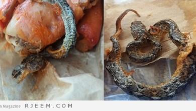 Photo of فيديو: مواطن يروي تفاصيل العثور على ثعباناً داخل وجبة دجاج مندي بأحد مطاعم بارق