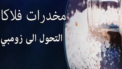 Photo of فيديو: أعراض إدمان مخدر فلاكا وحقيقة وصوله للسعودية