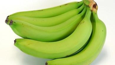 Photo of أسباب ضرورة تناول الموز غير الناضج