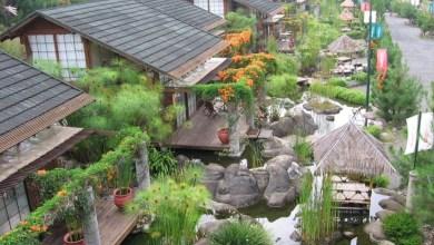 Photo of افضل فنادق الغابات الممطرة في اندونيسيا