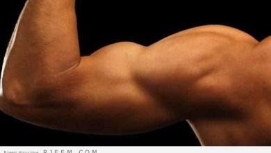 Photo of كيف تصبح قوي الجسم