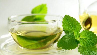 Photo of إليك الطريقة الصحيحة لاستخدم الشاي الأخضر للتخسيس
