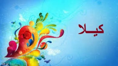 Photo of معنى اسم كيلا