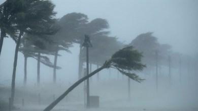 Photo of مسعفون يساعدون امرأة احتجزها إعصار إرما على الولادة عبر الهاتف