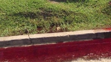 Photo of بالفيديو: دم يتسرب من دار للجنازات يحول شارعاً إلى فيلم رعب