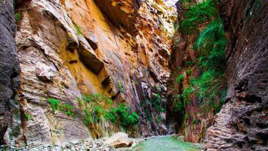 Photo of السياحة في السعودية: أجمل و أغرب 20 وجهة سياحية يجب زيارتهم في السعودية