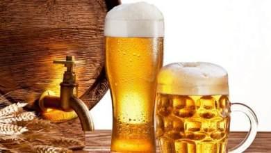 Photo of علاج القولون ببيرة الشعير