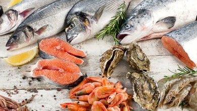 Photo of لحوم الأسماك خيار غذائي صحي ينبغي عدم اهماله