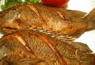 Photo of طريقة عمل سمك الهامور المقلي
