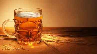Photo of فوائد بيرة الشعير للكلى والمسالك البولية