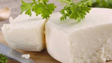 Photo of فوائد الجبنة الريكوتا وطريقة تحضيرها