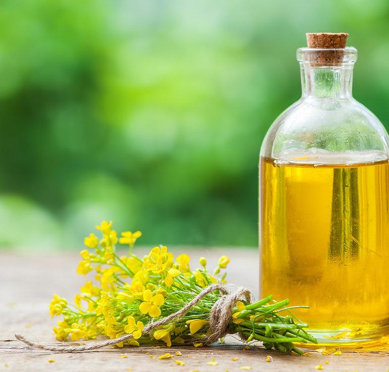 زيت الكانولا العضوي canola oil