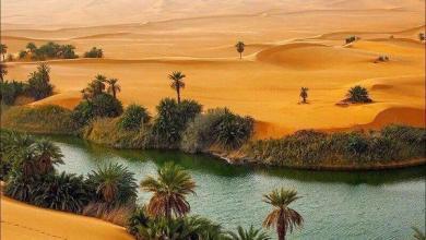 Photo of أماكن اثرية رائعة في الخليج